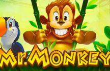 Mr. Monkey Slot Review