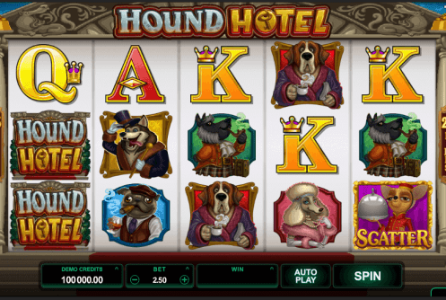 hotel hound screenshot
