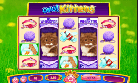 OMG Kittens Slot